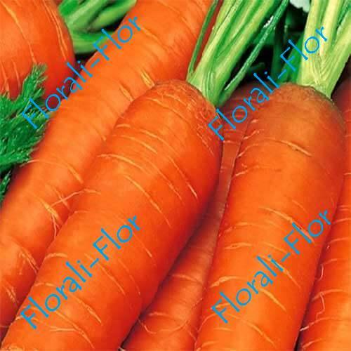 Морковь Зимний цукат 0, 5 г
