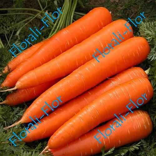 Морковь Золотая осень 0,5 г