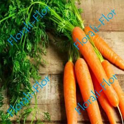 Морковь Император  0,5 г